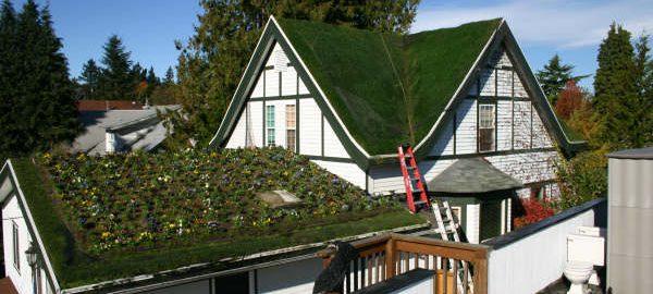 «Зеленый» дом, или 5 простых советов для экологичного дома